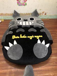 Dem-thu-bong-hinh-Totoro-mau-xam-den-NTB-202