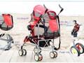 xe đẩy trẻ em thiết kế độc đáo