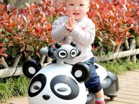 xe lắc trẻ em gấu Panda cao cấp