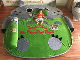 Nệm hình thú Totoro ruột cao su (4)