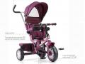 Xe đẩy trẻ em ba bánh B32-2 (1)