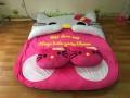 Đệm thú bông hình Mèo Hello Kitty NNTB-201 (8)