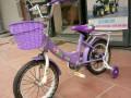 Xe đạp trẻ em Youmi 66A (13)