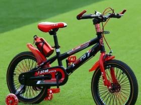 xe đạp trẻ em 353 3