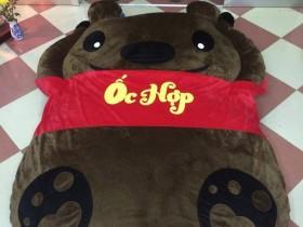 Đệm thú nhồi bông hình Gấu Teddy NTB 213 (2)